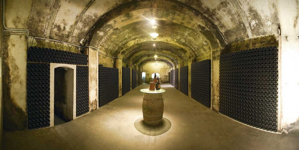 Bottle-cellar-on-one-of-a-Majorcan-winery-in-Binissalem