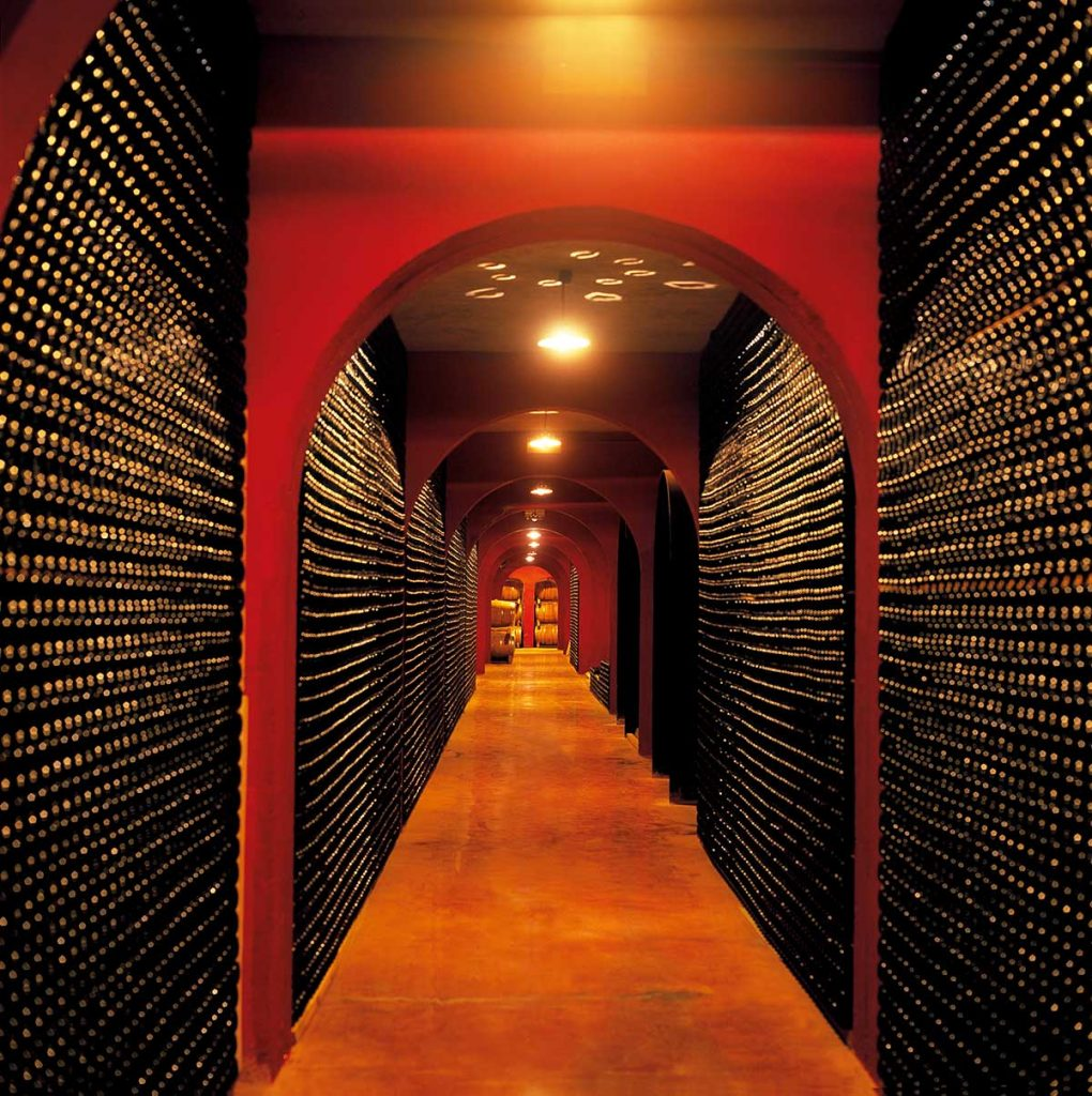 Modern-and-impressive-bottle-cellar-in-Binissalem