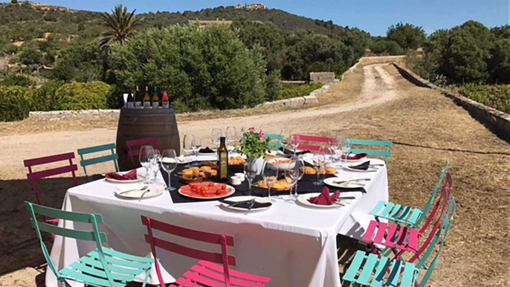 The-best-winetours-on-Mallorca