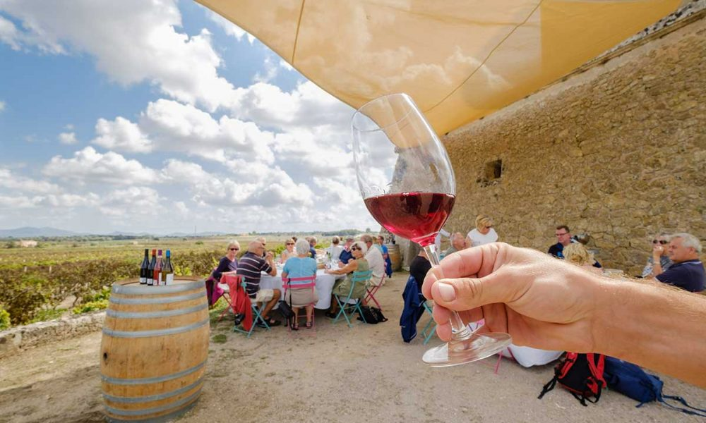 Winetasting-tour-on-Mallorca